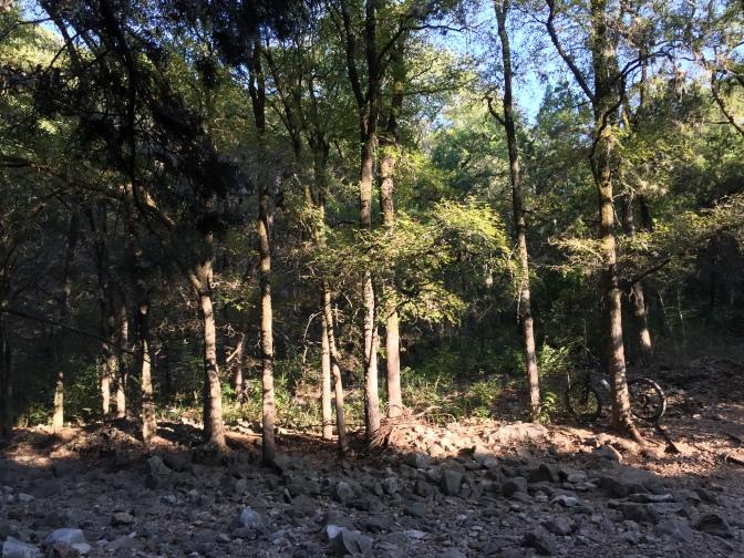 image3 (5)